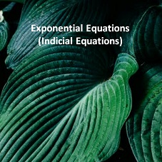 Exponential Equations (Indicial Equations)