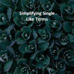 Simplifying Single Like Terms