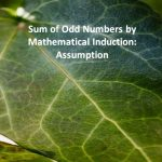 Sum of Odd Numbers by Mathematical Induction Assumption