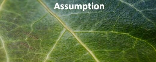 Sum of Odd Numbers by Mathematical Induction: Assumption